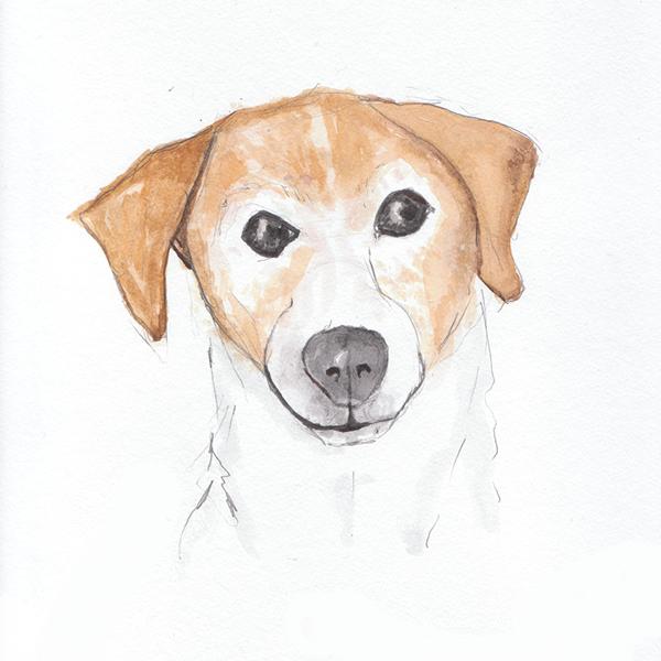 small-pet-watercolor-portait-ladyfolkstudio.jpg