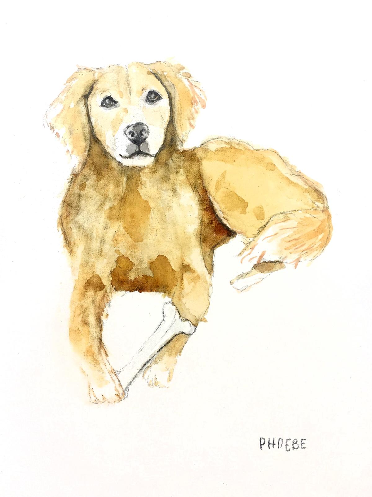 Ladyfolk-Studio-Watercolor-Pet-Portrait-Phoebe-web.jpg