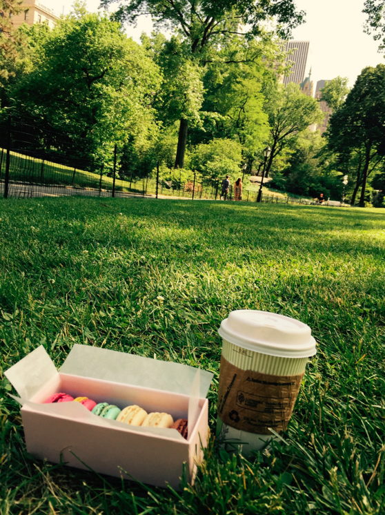 Macarons and coffee in Central Park.