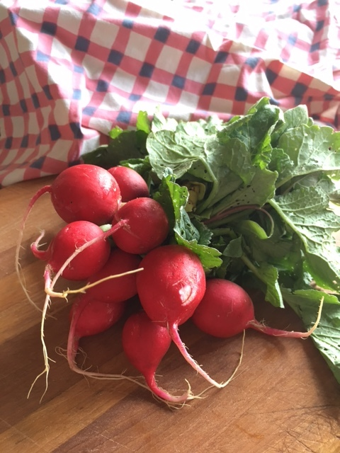 Radishes are the new cucumbers