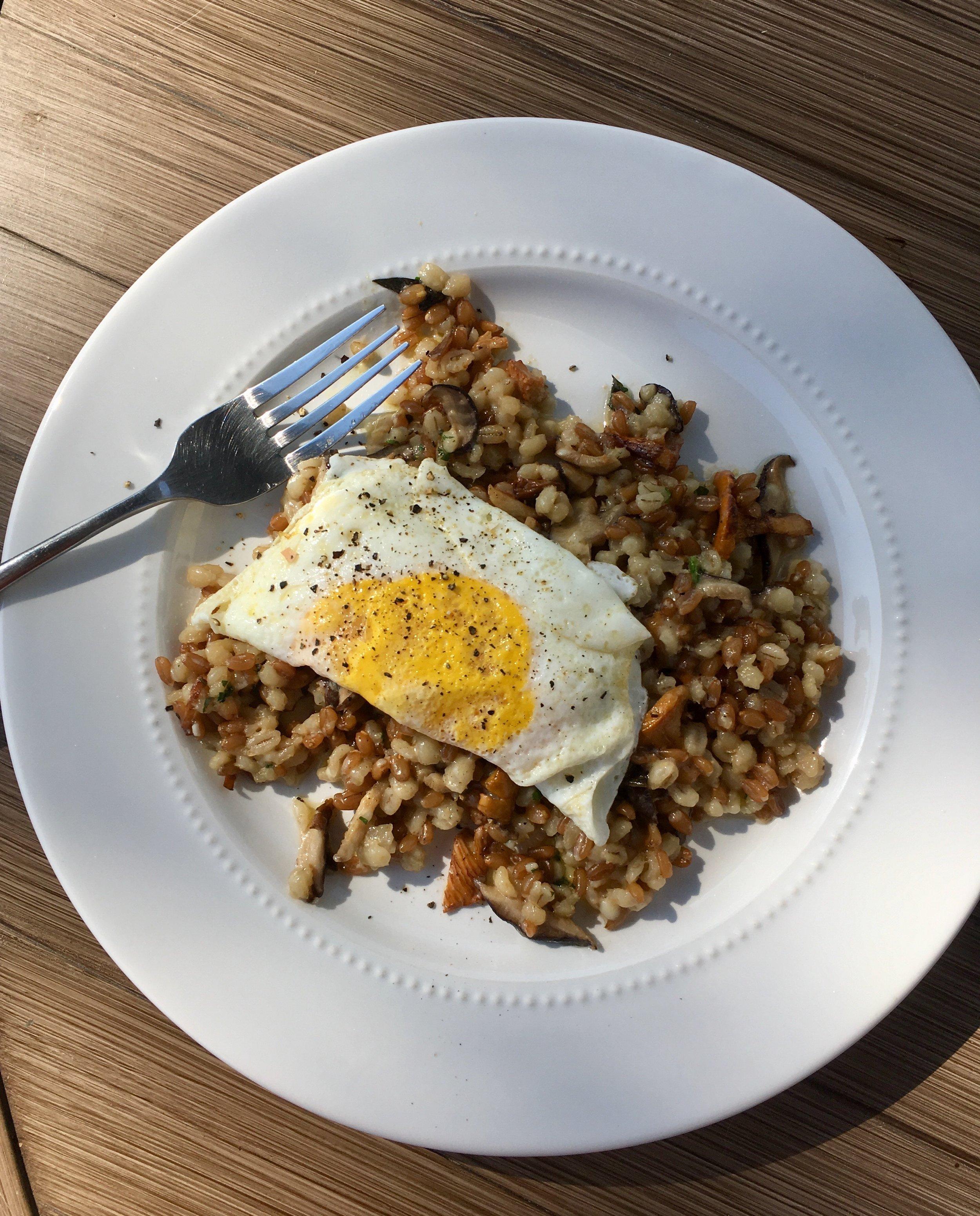 Stonecat wild mushroom risotto for breakfast