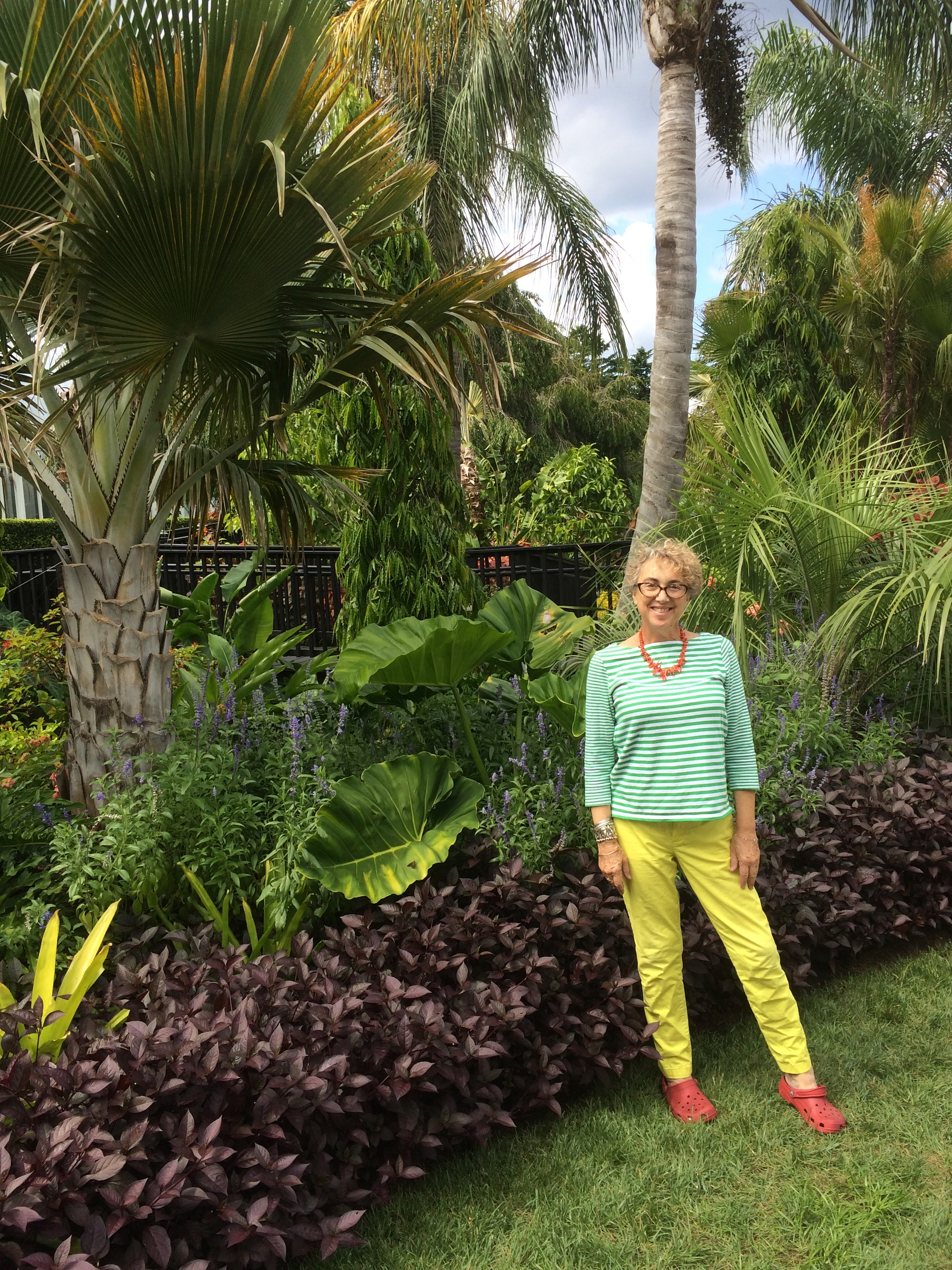 Posing with palms, philodendrons and bromeliads: Burle Marx would like my colors!
