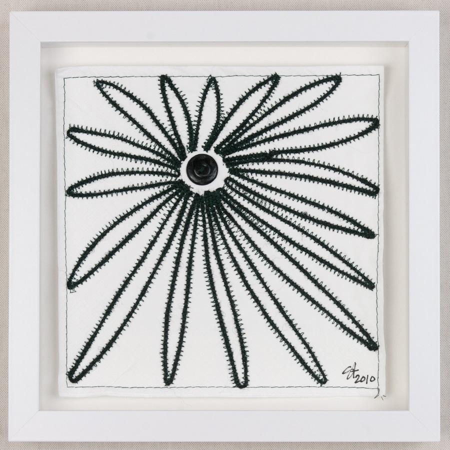 Echinacea 900.jpg