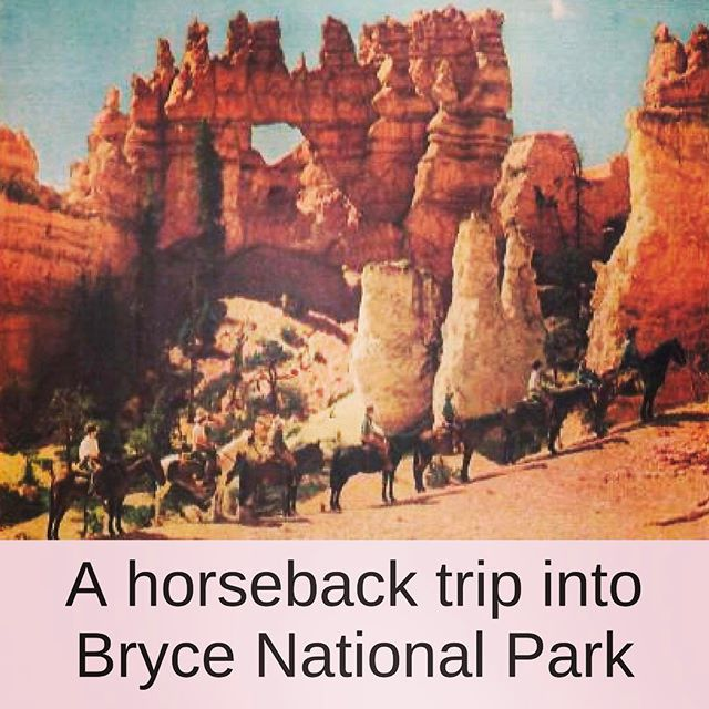 #TBT (Throwback Thursday!) Bryce National Park #Mighty5Tour #desert #travel #luxury travel #findyourpark 📷: National Park Service #utah