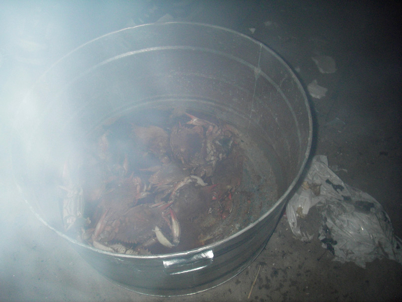 Then we cooked up some crabs.