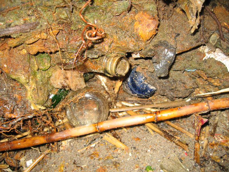 The bottles used for the bar were excavated from the ground surrounding the site.