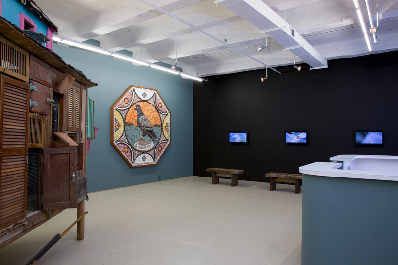 Trading with the Enemy, Installation, 2013