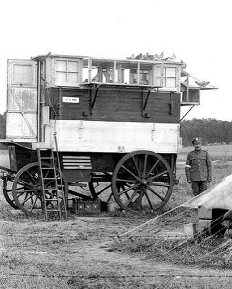 WWI Mobile Pigeon Deployment Vehicle