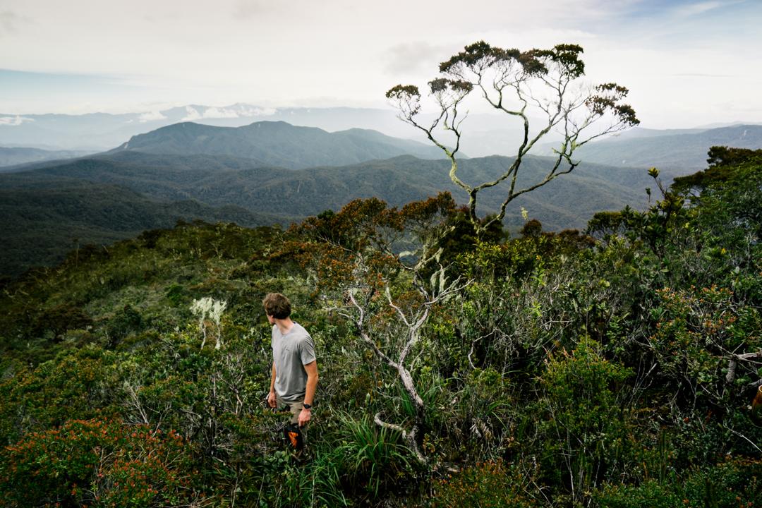 Oli on the slopes of Gunung Lembu