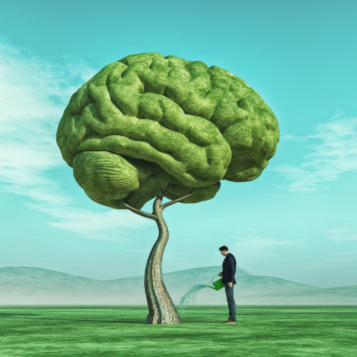 Tree Brain.png