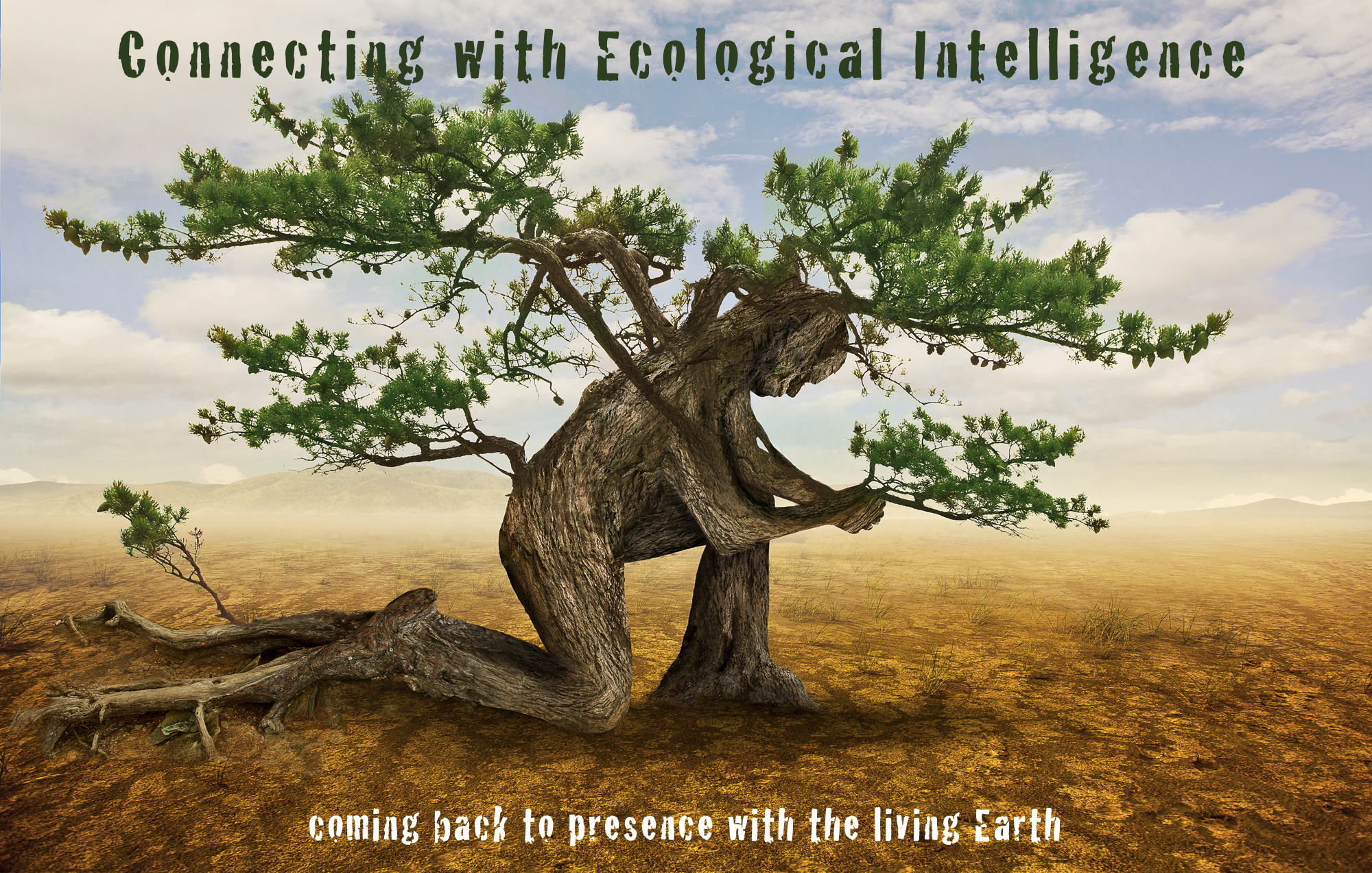 Ecological Intelligence Blog - See my latest posts