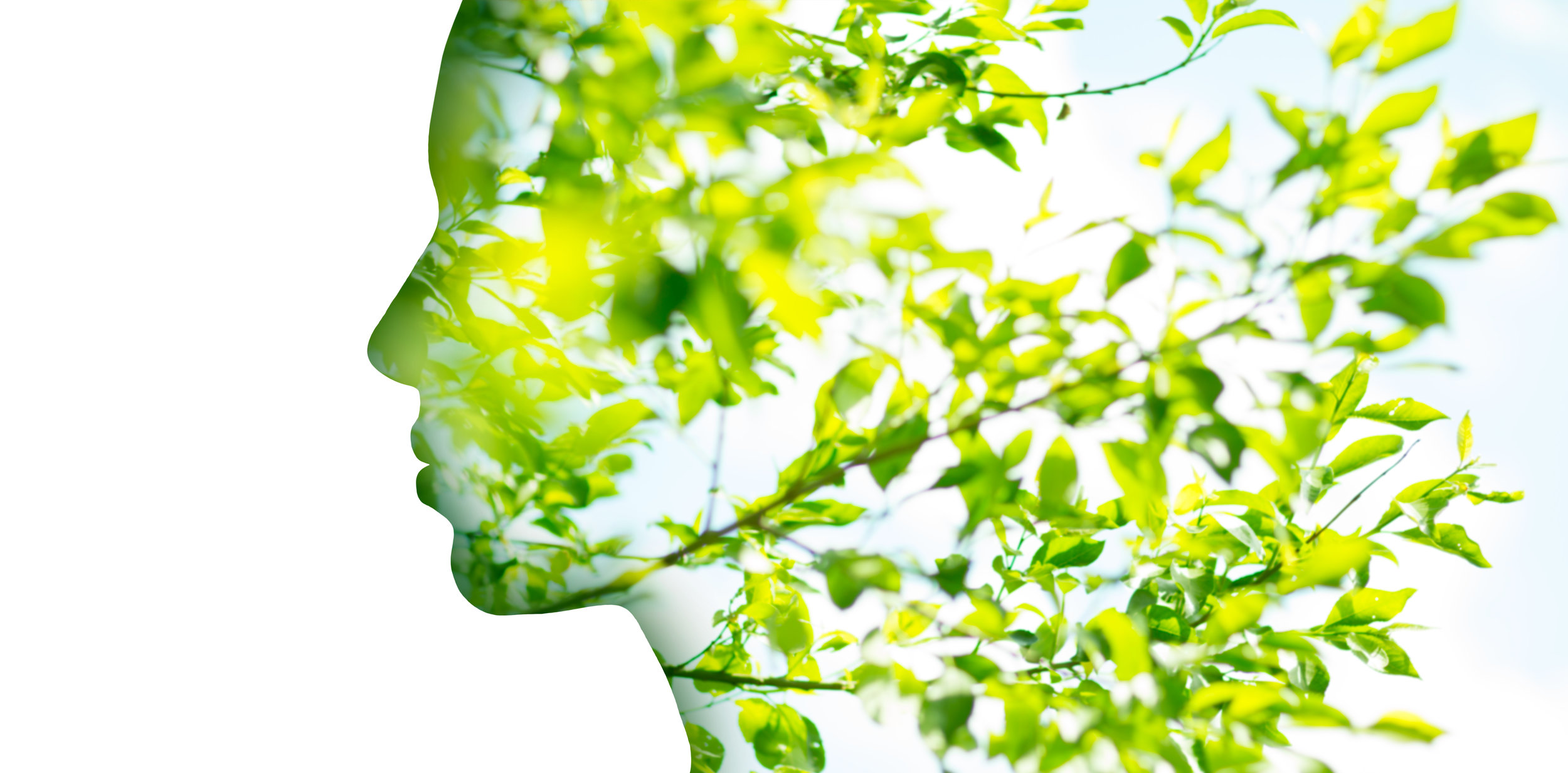 beauty, nature and ecology concept - portrait of woman profile with green tree foliage with double exposure effect