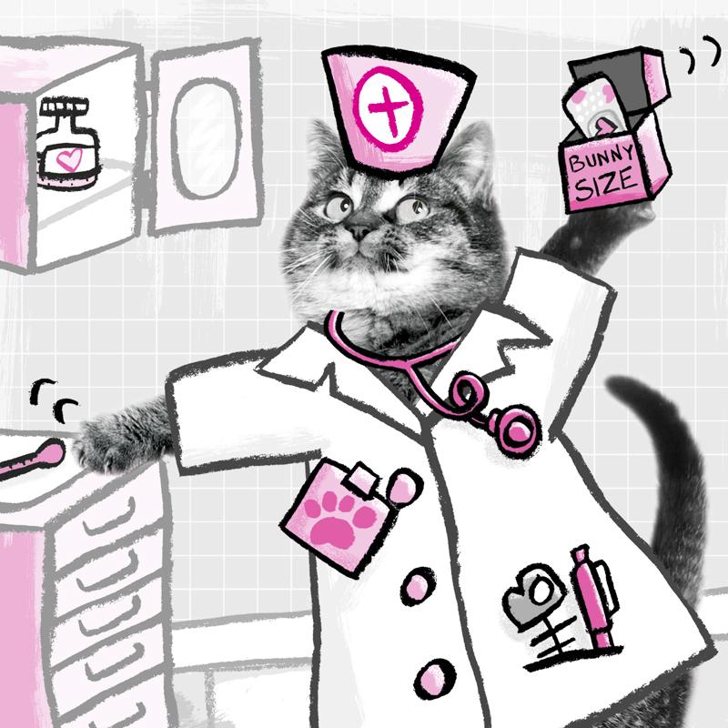 squarespace_portfolio_dr_kitty.jpg