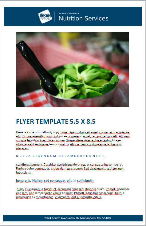 NS_FLYER55x85.PNG