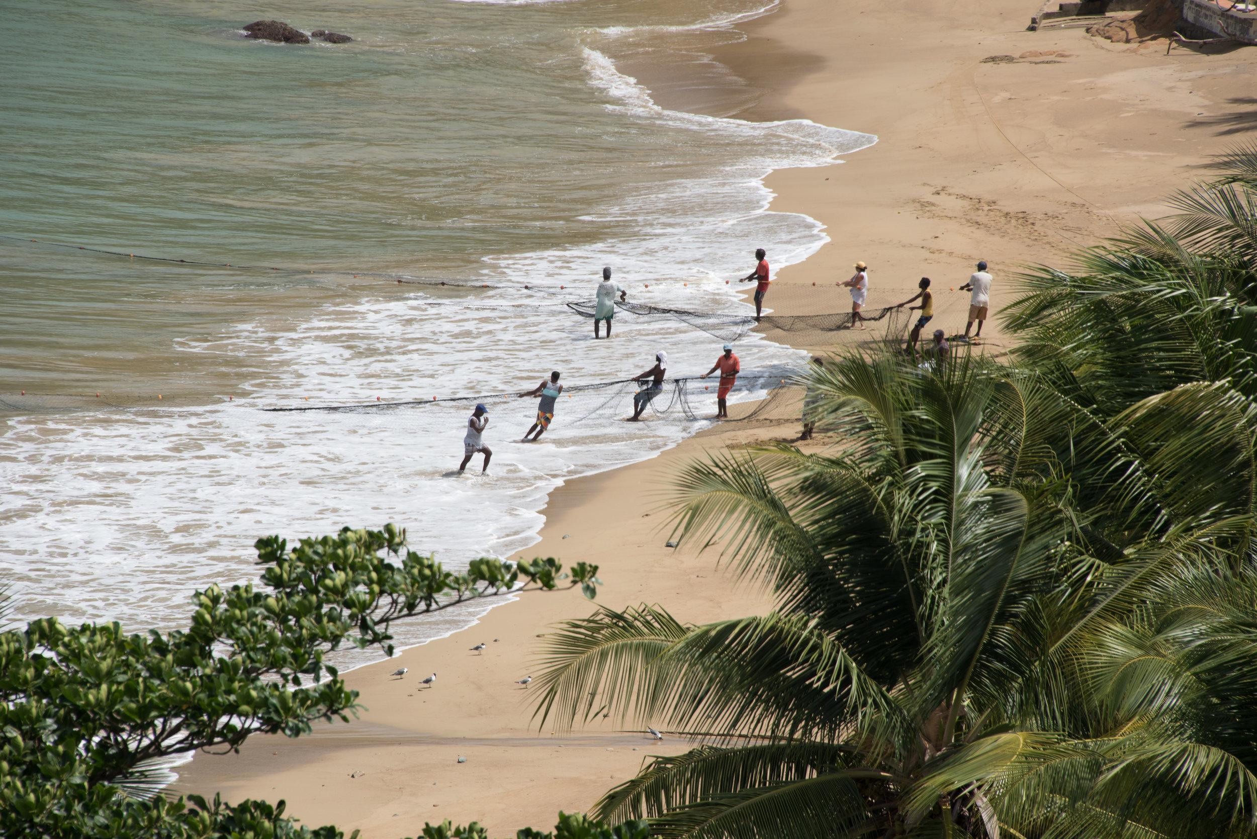 170422_Barrie Fisher_Tobago-1115.jpg