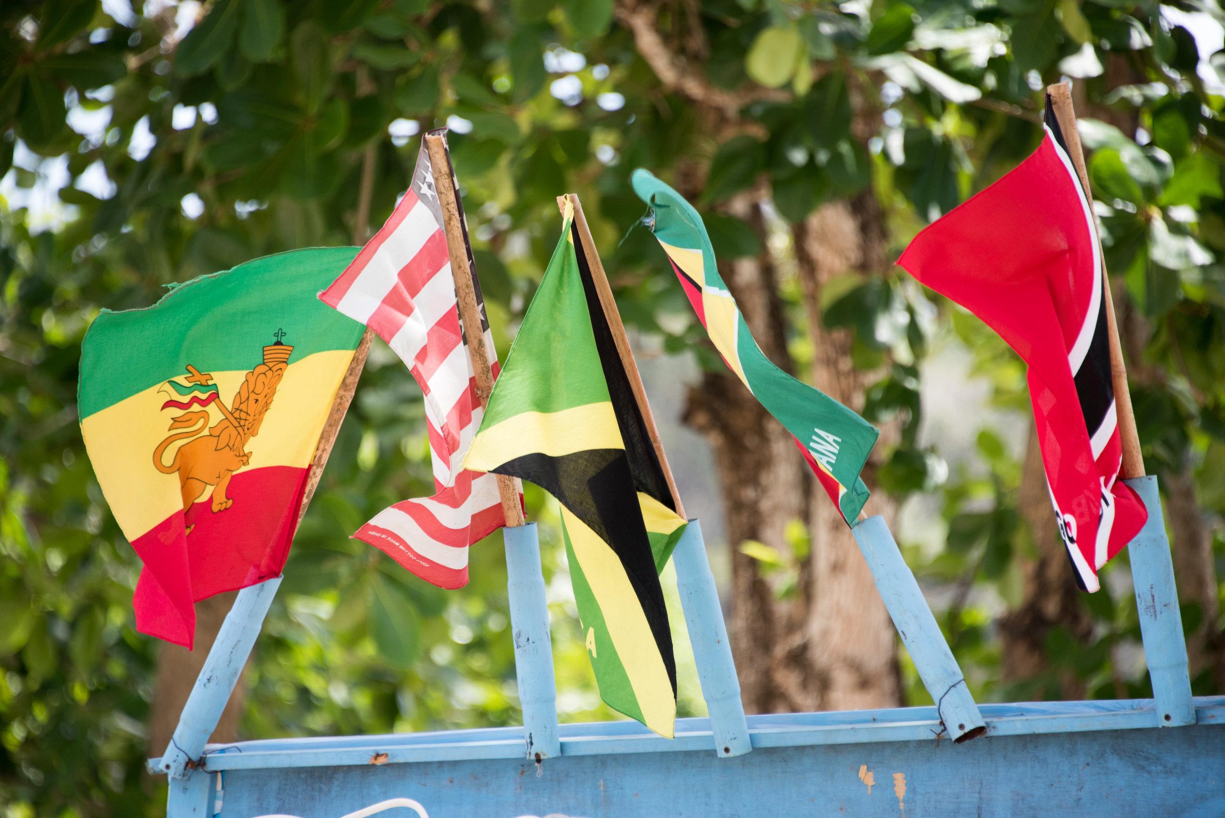 170422_Barrie Fisher_Tobago-1417.jpg