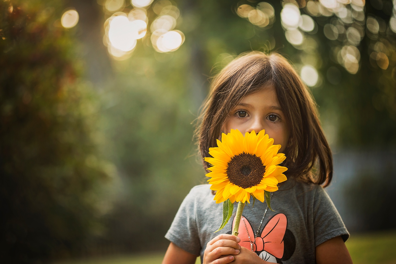 Sunflowers_Morristown_NJ_Photographer_0001.jpg