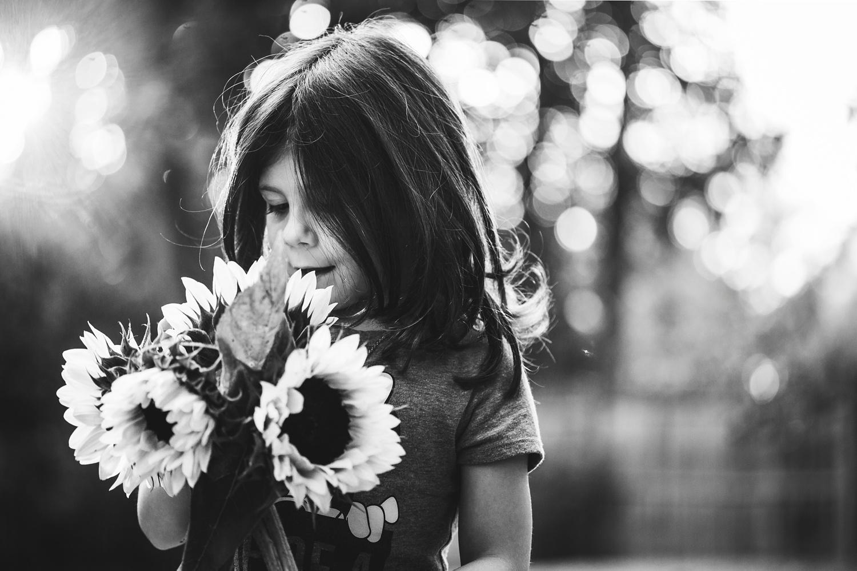 Sunflowers_Morristown_NJ_Photographer_0002.jpg