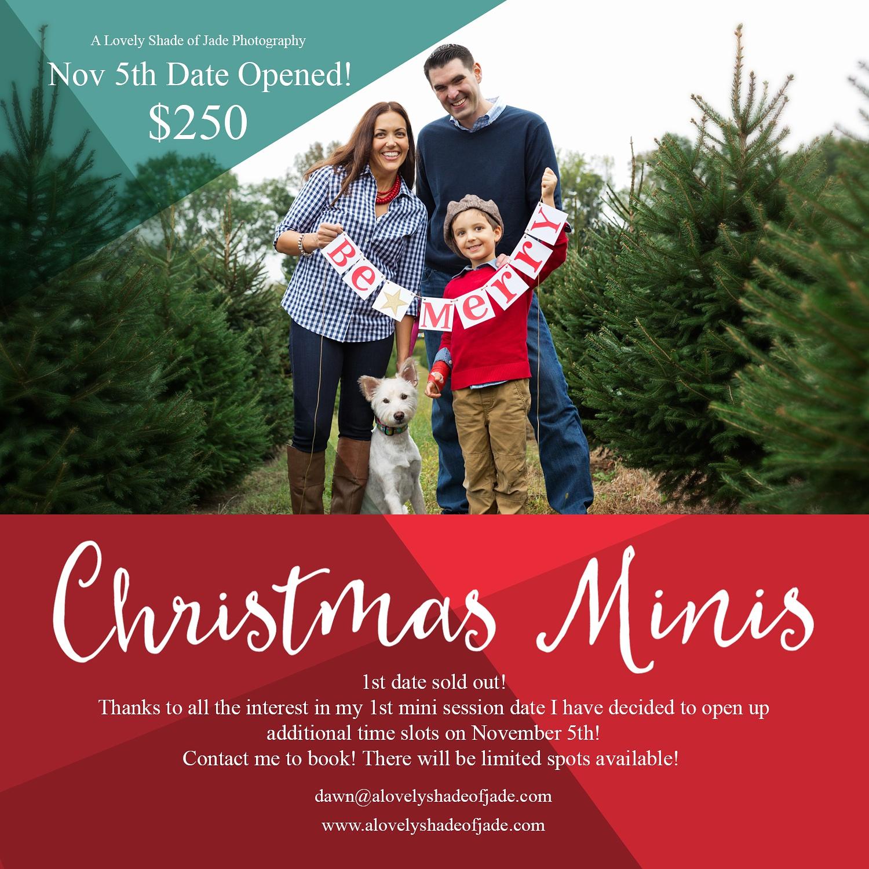 Christmas_Minis_Morristown_NJ_Photographer_0021.jpg