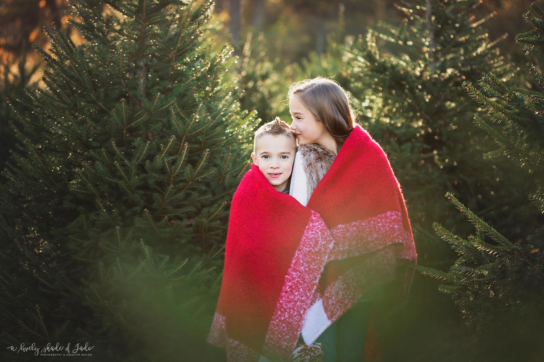 Christmas_Tree_Minis_Morristown_NJ_0000.jpg