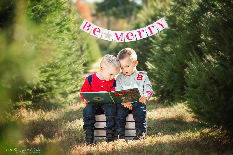 Christmas_Tree_Minis_Morristown_NJ_0001.jpg