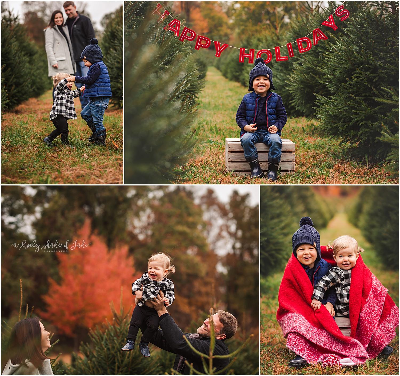 Lauren_Tree_Farm_Minis_Mendham_NJ_0003-1.jpg