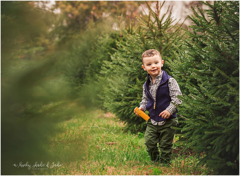 Levine_Tree_Farm_Minis_Mendham_NJ_0004.jpg