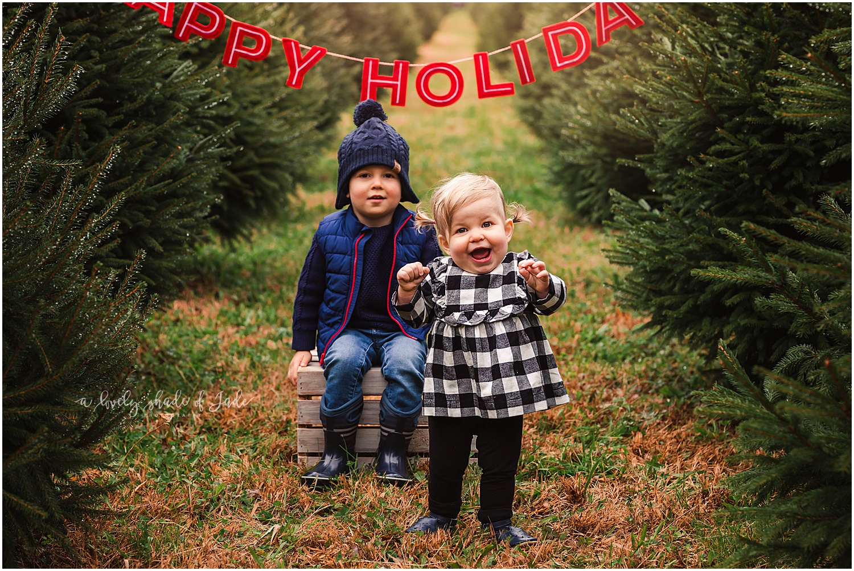 Lauren_Tree_Farm_Minis_Mendham_NJ_0002.jpg