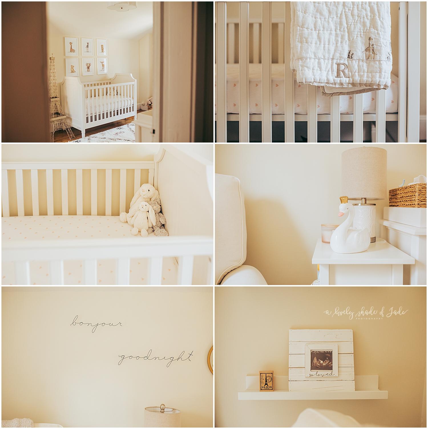 In_Home_Newborn_Morristown_NJ_Photographer_0027.jpg