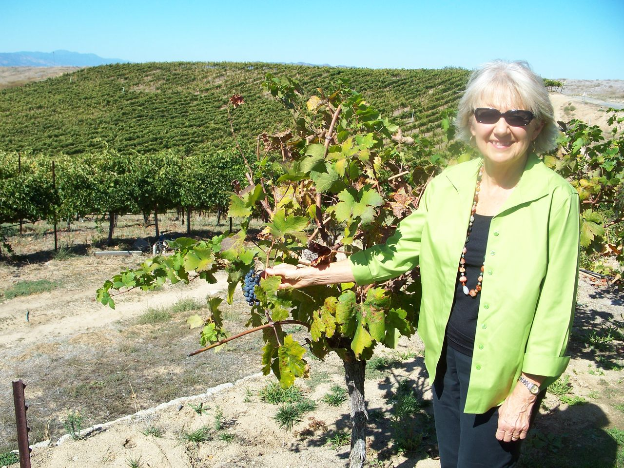 jan at the harvest