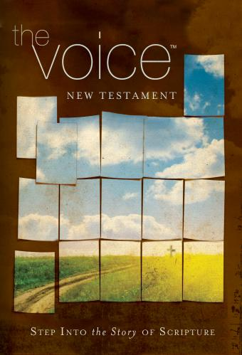 Voice NT cover79