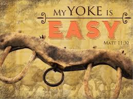 yoke easy.jpg