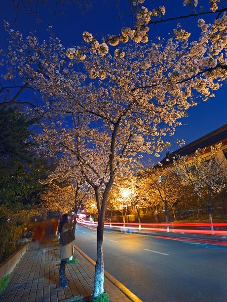 Jiming Temple; Nanjing, China  Photography by:衍