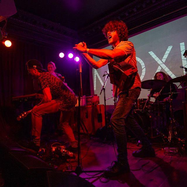 @moxiemuso at @lostlanedublin for @irelandmusicweek ——— . . . . #music #gig #concert #musicphotography #concertphotography #live #ireland #livemusic #musicphotography #musician #canon6D #irelandmusicweek #lostlane #moxie