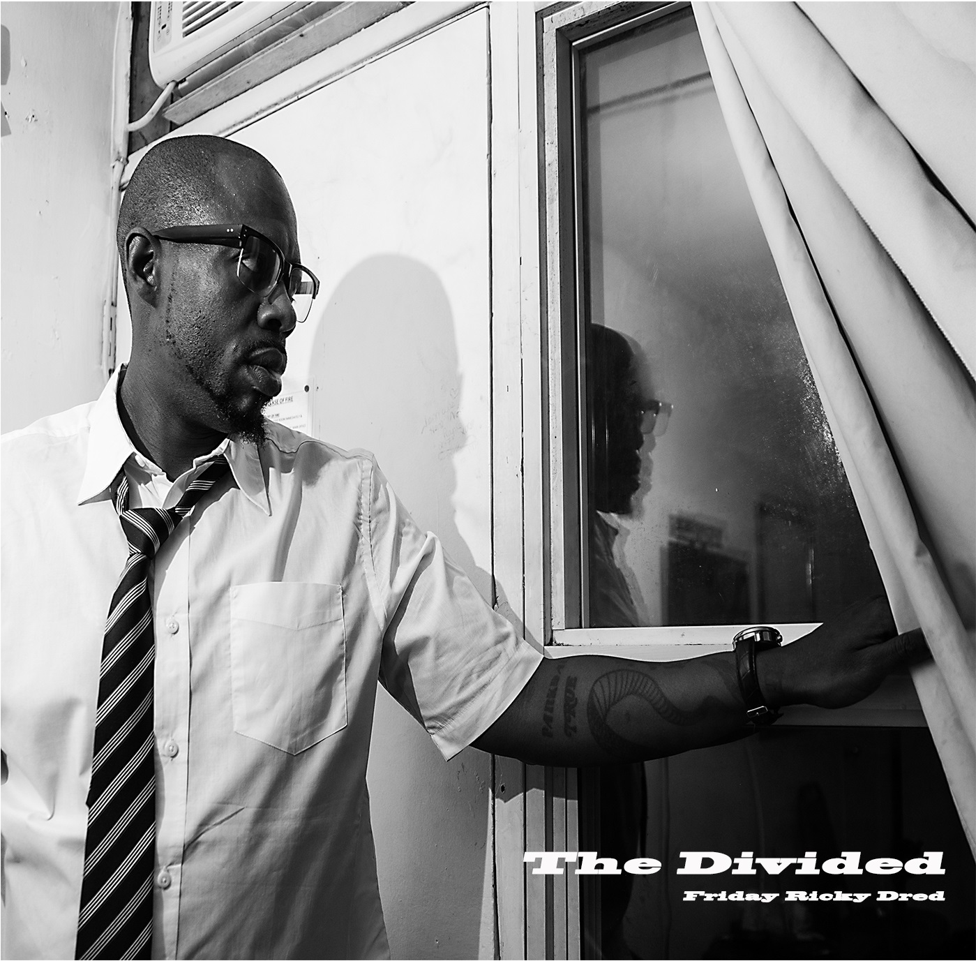 The Divided Cover No Border.jpg
