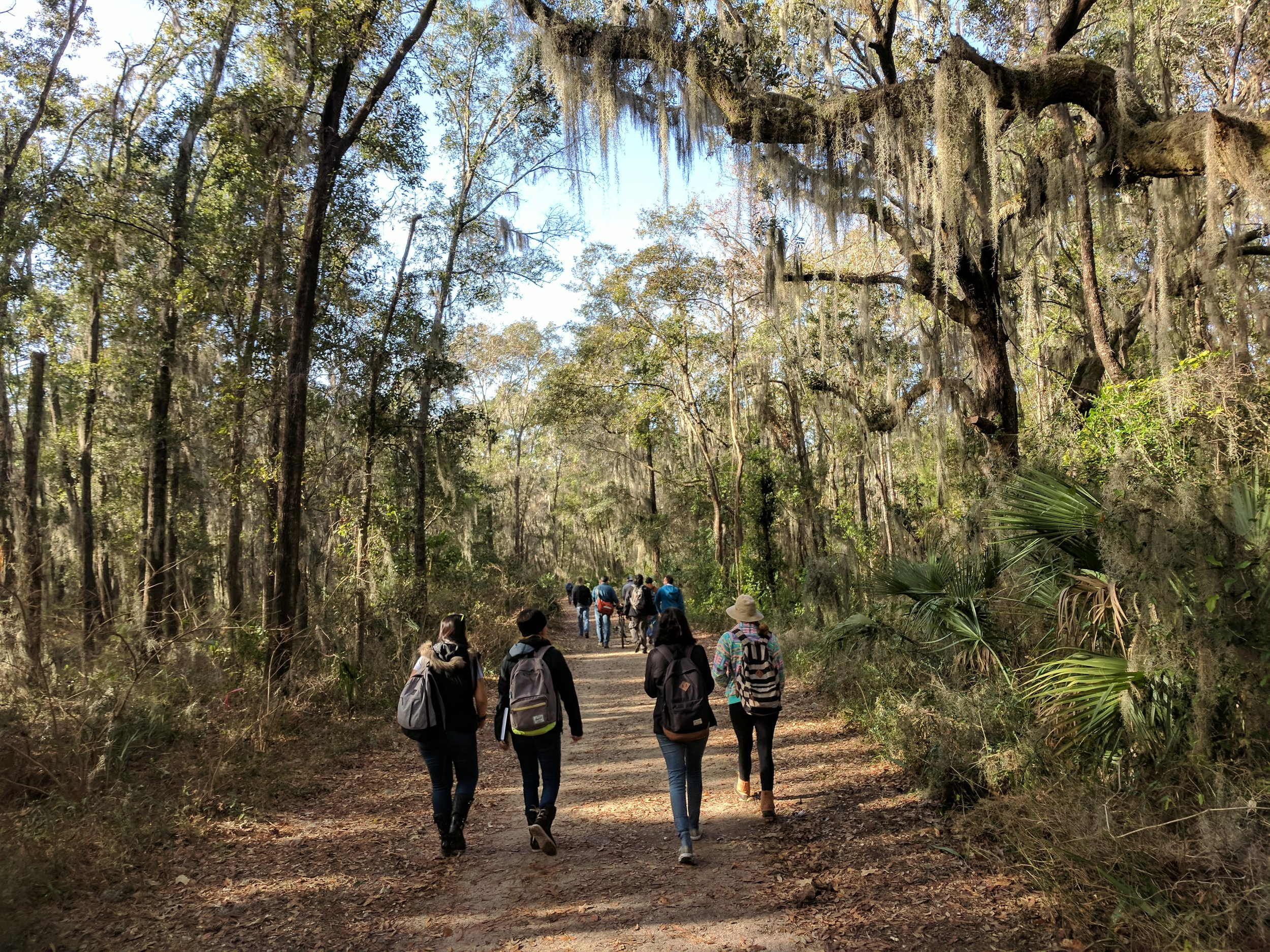 Photograph from a class trip to partake in a biomimicry iSite where we got to experience local biodiversity with an eye mask on, only able to describe our surroundings by touch.