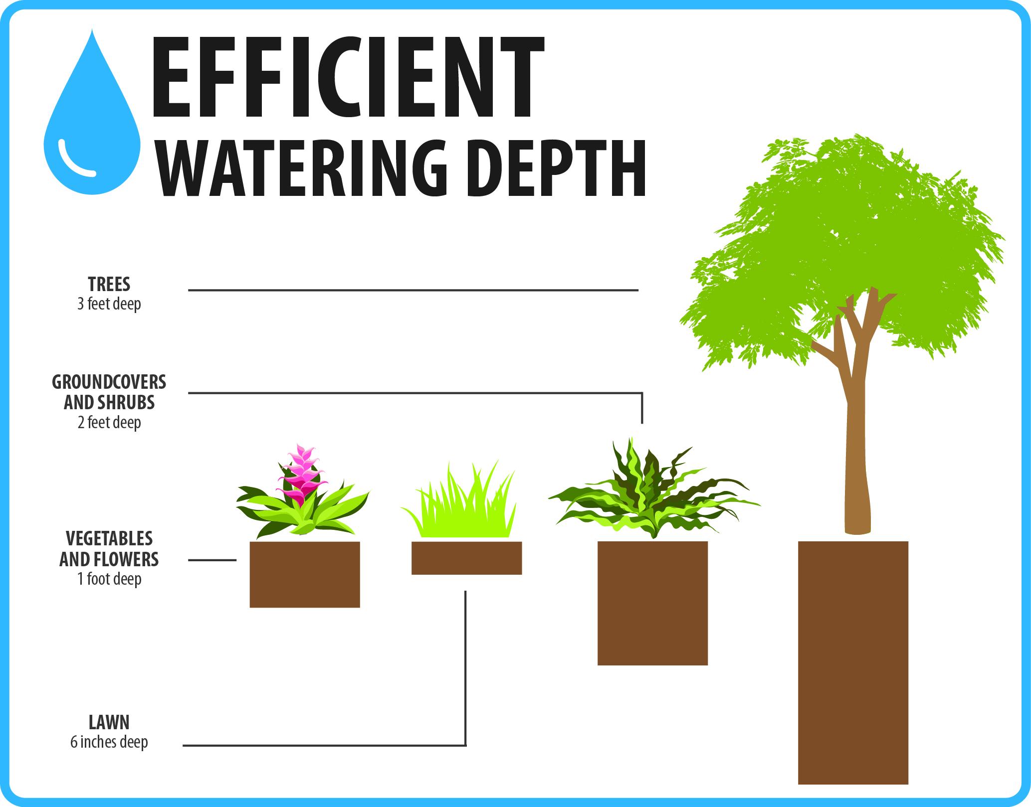 Efficient-Watering-Depth-pg24.jpg