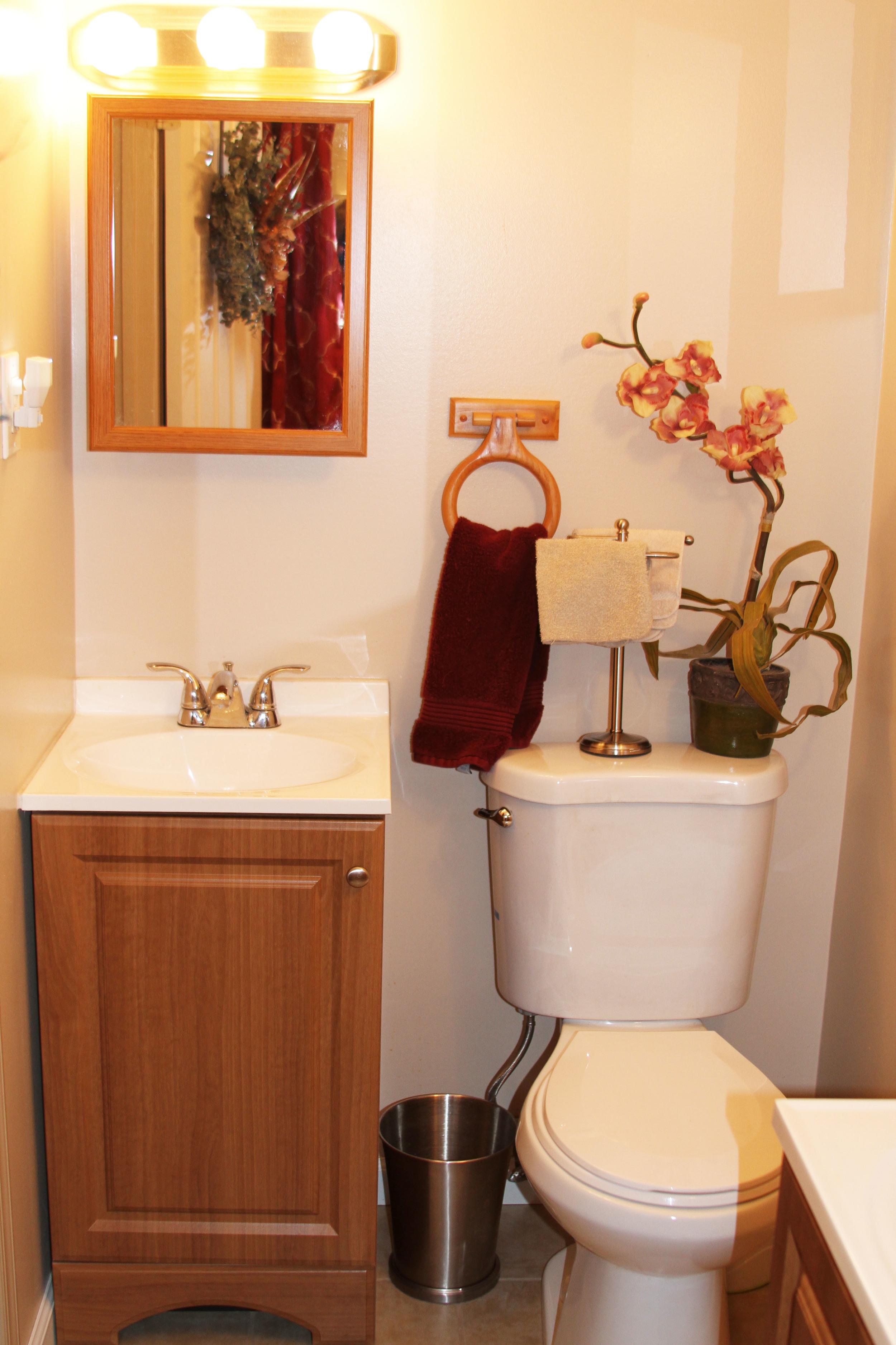 bathroom1toilet.jpg