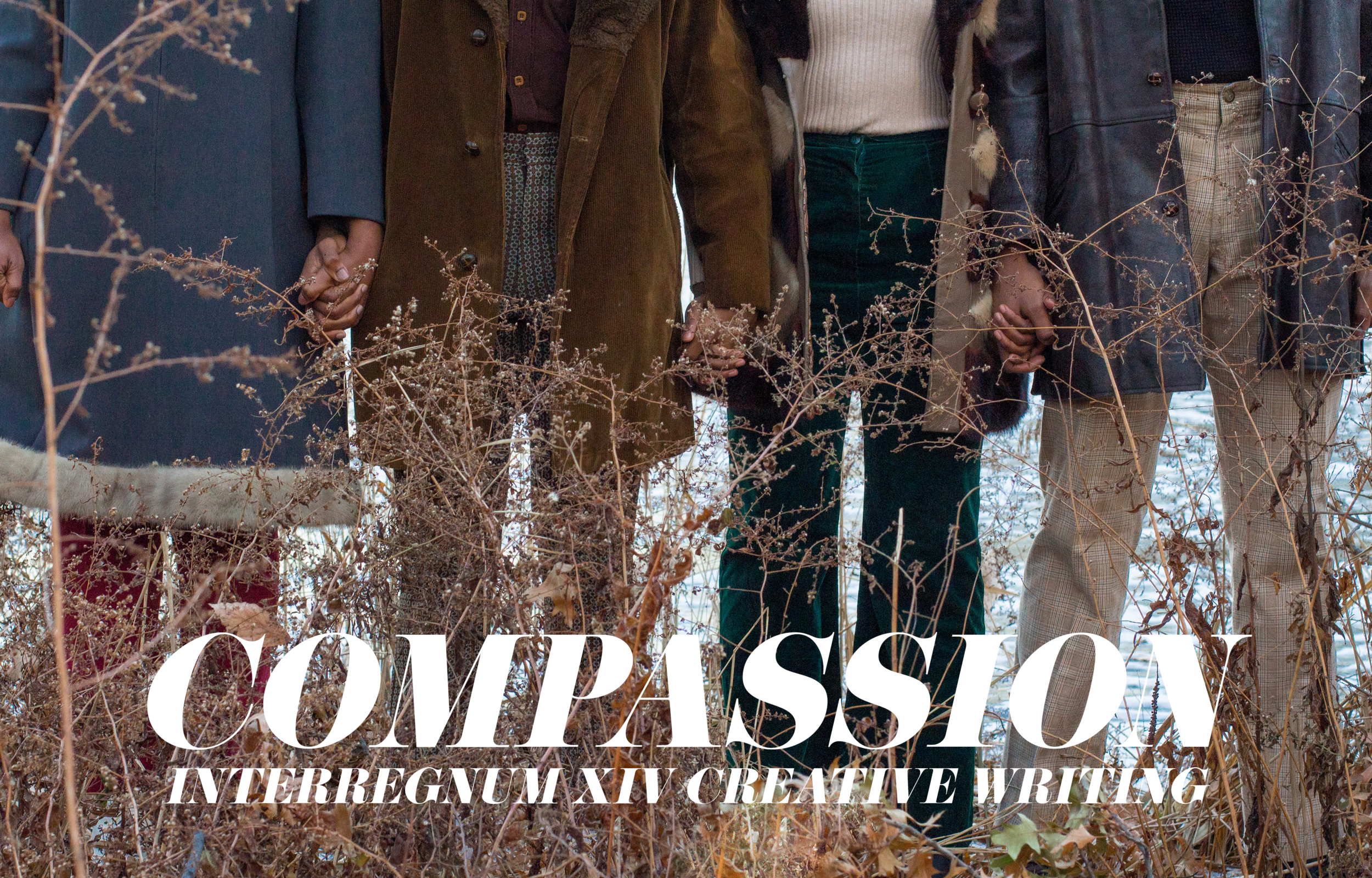 smol compassion cover.png