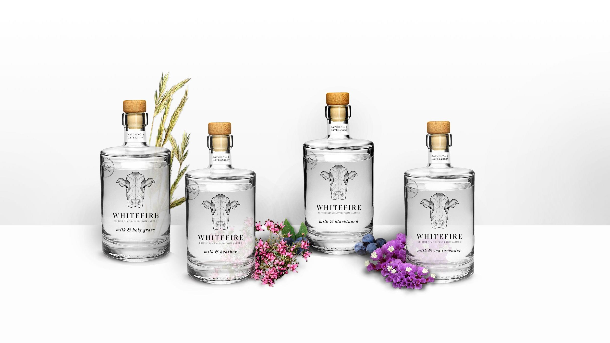 Gin-Bottles.jpg