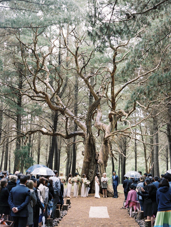CHINESE-WEDDING-PHOTOGRAPHER-ADELAIDE-0022.jpg