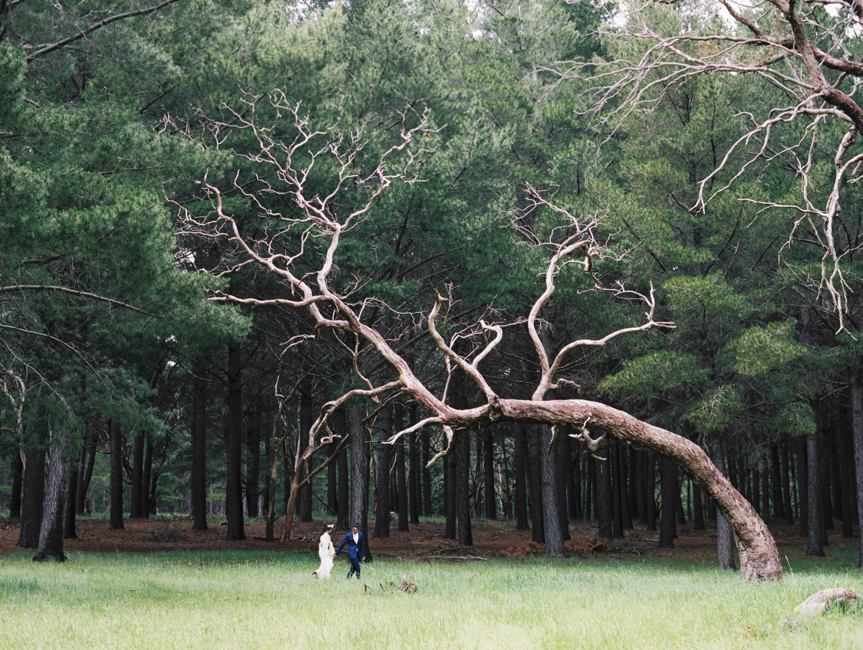 CHINESE-WEDDING-PHOTOGRAPHER-ADELAIDE-0063.jpg