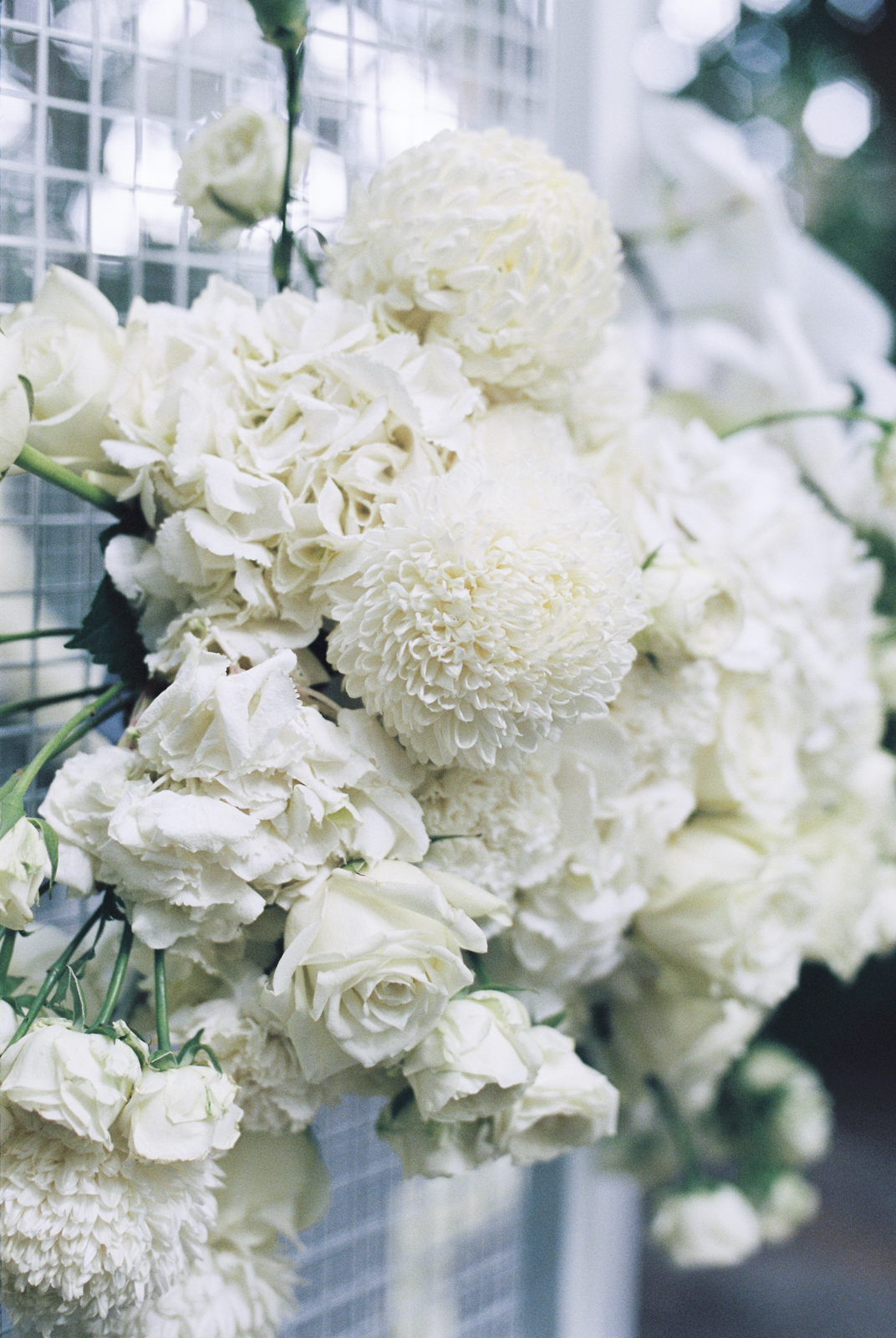 BAROSSA-VALLEY-WEDDING-PHOTOGRAPHER-0006.jpg