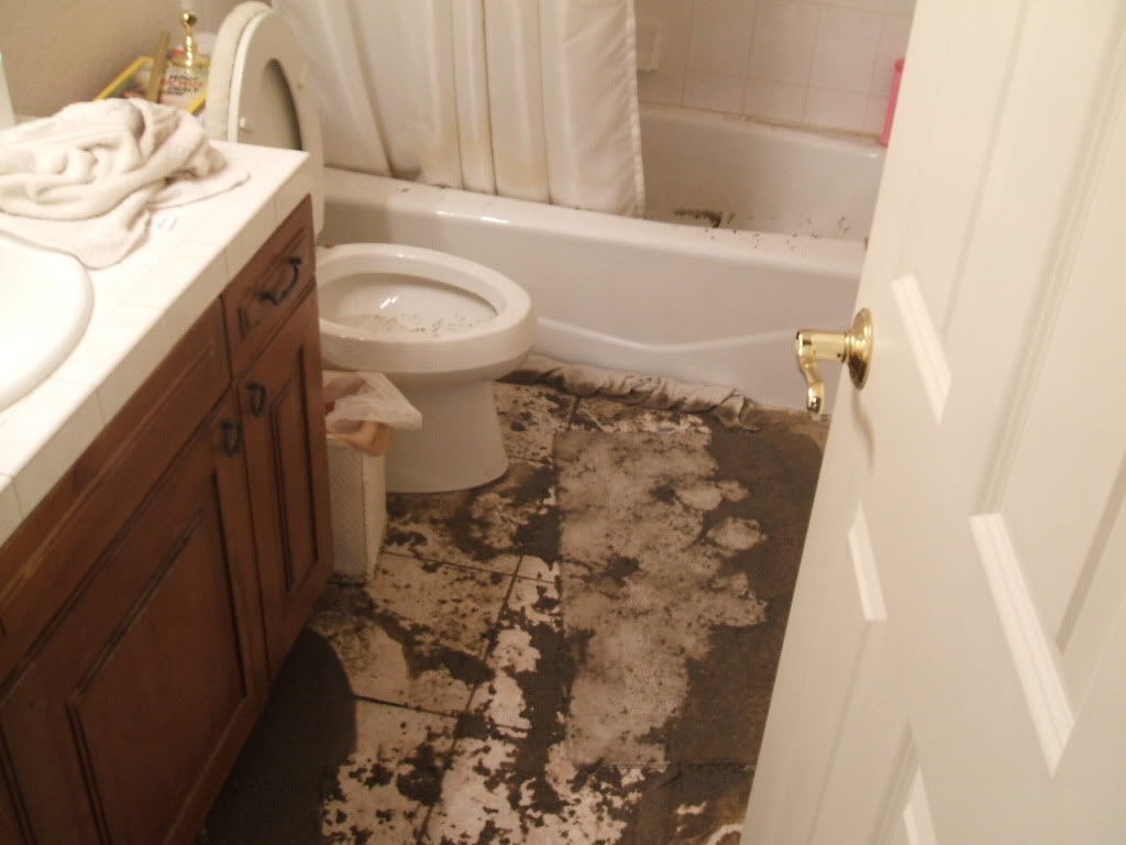 Sewer-Stoppages-need-Drain-Cleaning-in-Knoxville.jpg