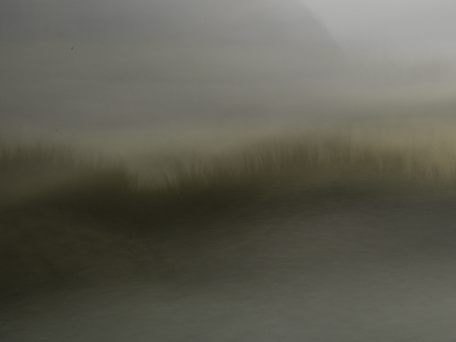 A foggy day in the salt marsh.   M1115A-3-1461