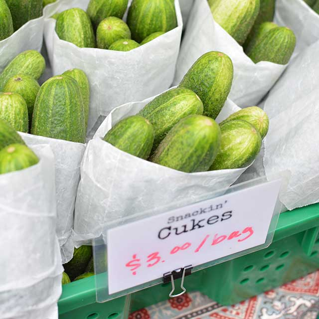 Buying-cucumbers-for-fermenting-pickles.jpg