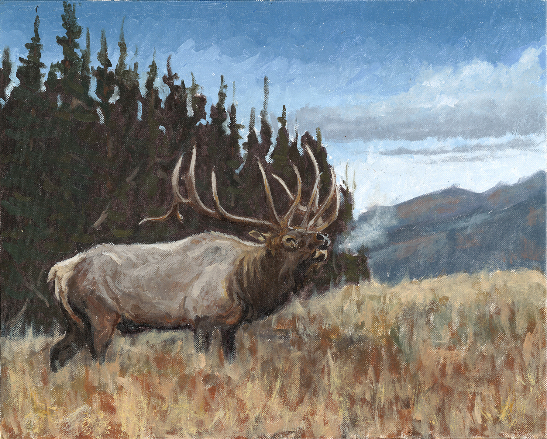 The Day After Hunting Season (Sold)
