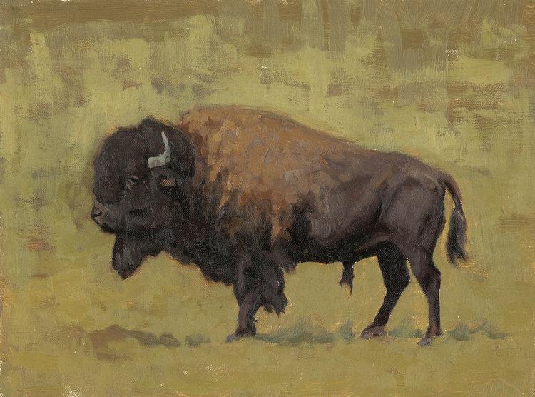 Golden Bison (Sold)
