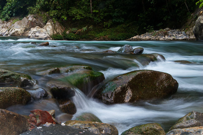 River running through Gunung Leuser. Image by Gita Defoe for Photographers Without Borders.