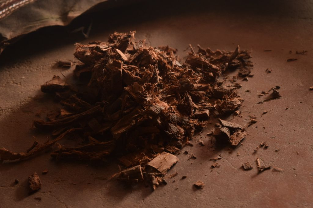 Desi Bawal tree crushed pieces.JPG